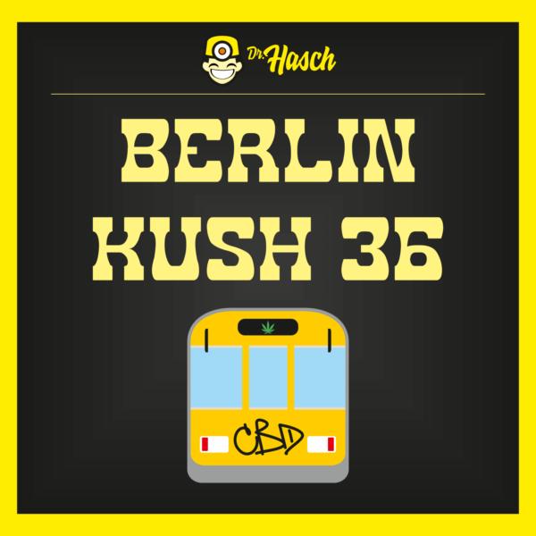 berlin-kush