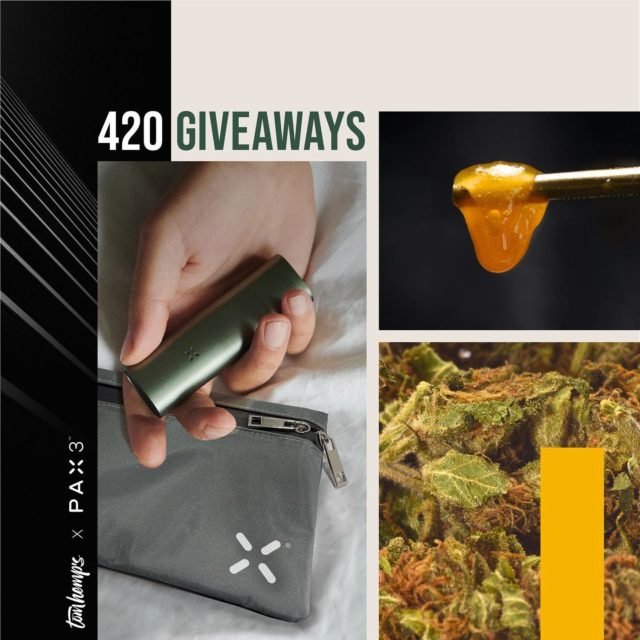 G I V E A W A Y ⚡️⚡️⚡️🎉🎉🎉  It's Tom Hemp's contest time again! To proper celebrate 420 Day we have an amazing give away for you. 🌱💚👏  In cooperation with @paxvapor you can win 1 x PAX 3 Complete Kit, a wonderful PAX bag and to use this amazing device properly 1x Tom Hemp's Harlequin Cheese CBD Flowers 5 grams and 1x Tom Hemp's Blueberry CBD Wax 2 grams.   **** TO ENTER THE GIVEAWAY:   🌈 Follow @tomhemps_cbd   🌈 Like this post   🌈 Tag minimum 3 or more friends in the comments section. The more friends you tag, more chances for you to win the contest.   🌈Share this post in your story and tag @tomhemps_cbd. (DM us your Screenshot if your account is private)   Good luck and HAPPY420. ✌️  #cbd #vaporizer #gewinnspiel #giveaway #tomhemps #paxvapor   —————————————————————— Das Gewinnspiel endet am 25.04.2021 um 23:59h. Der Gewinner wird in unserer Story bekannt gegeben und per Zufallsgenerator ausgewählt.   Der Rechtsweg ist ausgeschlossen. Das Gewinnspiel steht in keinerlei Verbindung mit Instagram. Mit der Teilnahme stimmst du zu, dass deine Adressaten im Gewinnfall für den Versand verwendet werden dürfen. Teilnahme ab 18 Jahren und nur in Deutschland, Italien, Frankreich, Portugal, Belgien, Luxemburg, Niederlande, Österreich, Spanien, Kroatien, Polen, Tschechien.